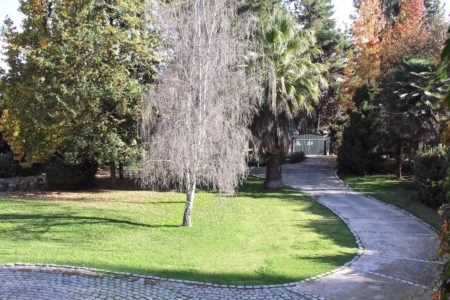 jardin delantero caminito